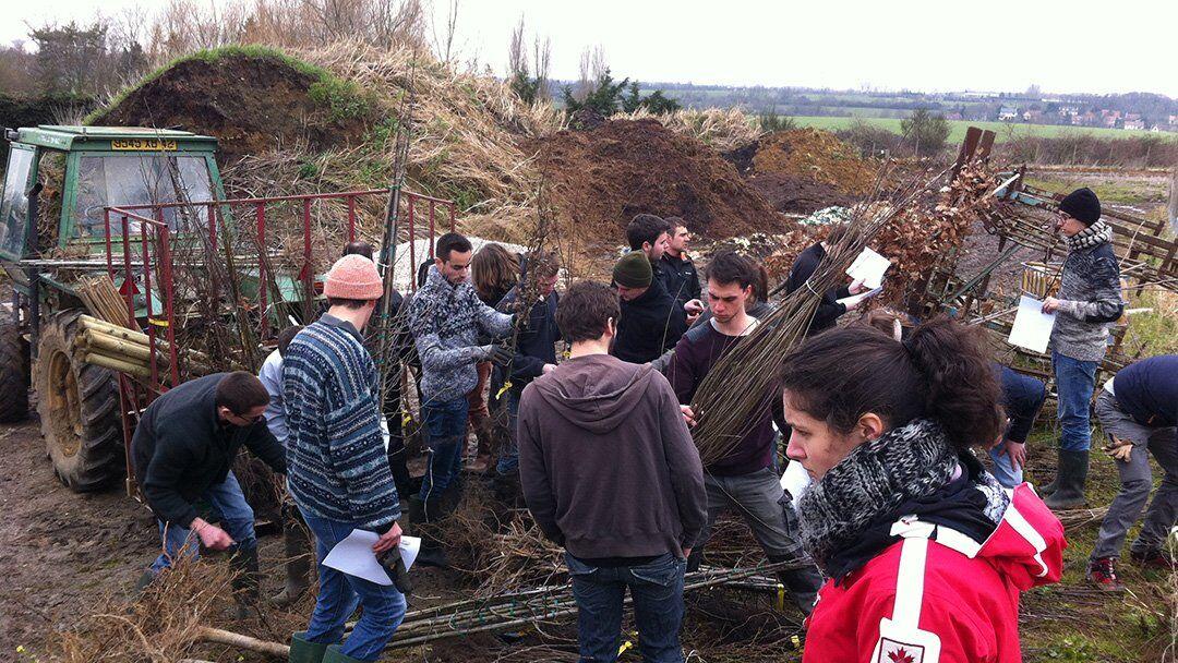 Plantation d'arbres avec les étudiants